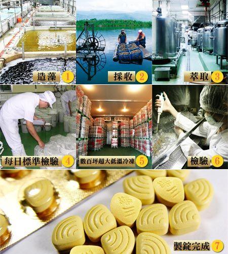 全世界只有台灣生產-綠川黃金蜆